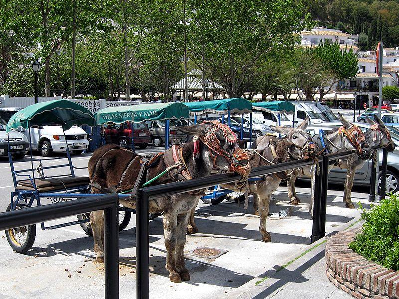 burros taxi de Mijas