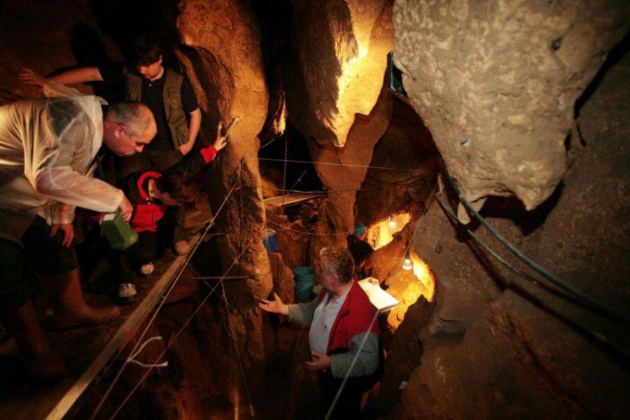 El Sidrón: el yacimiento neandertal más importante de España