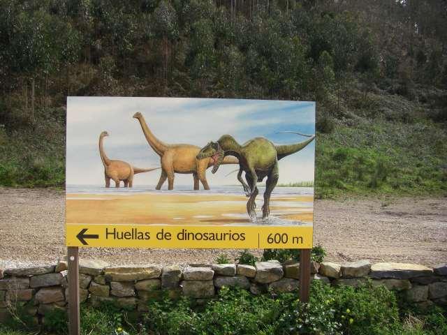 icnitas museo jurasico blog axtur com - La huella de los dinosaurios en Asturias