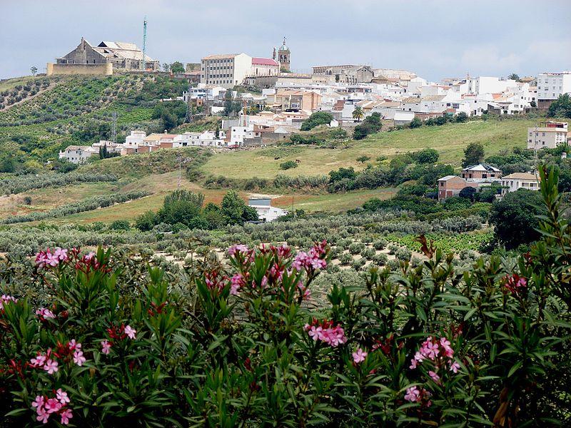 Montilla, la cuna del Gran Capitán (Córdoba)