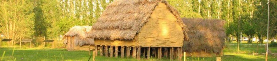 poblado neolitico la draga