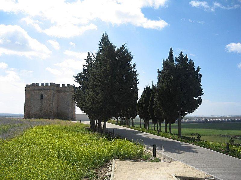 Yacimiento arqueológico de Doña Blanca (Cádiz)