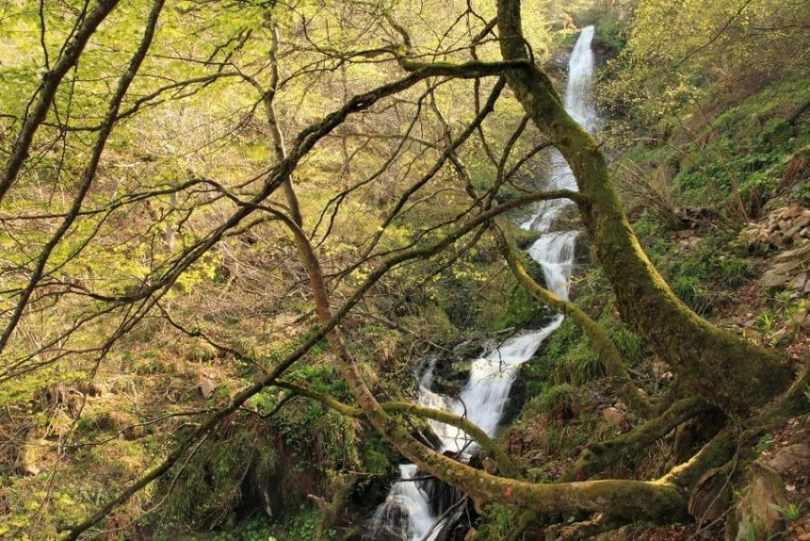 Un salto a la Prehistoria en Teverga (Asturias)