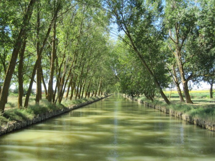 Canal de Castilla: la vía marítima que creó la Ilustración española