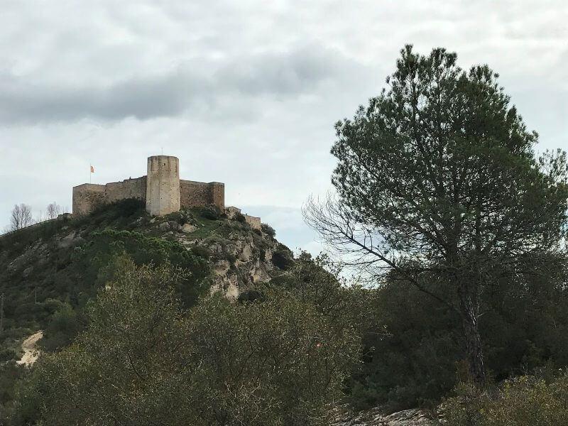 castillo anoia