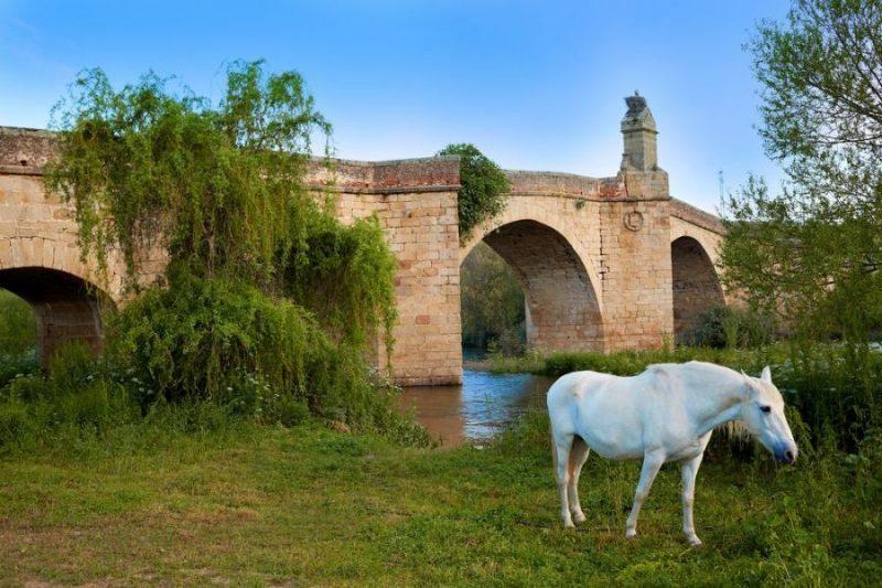 La muralla más sorprendente de la Vía de la Plata: Galisteo