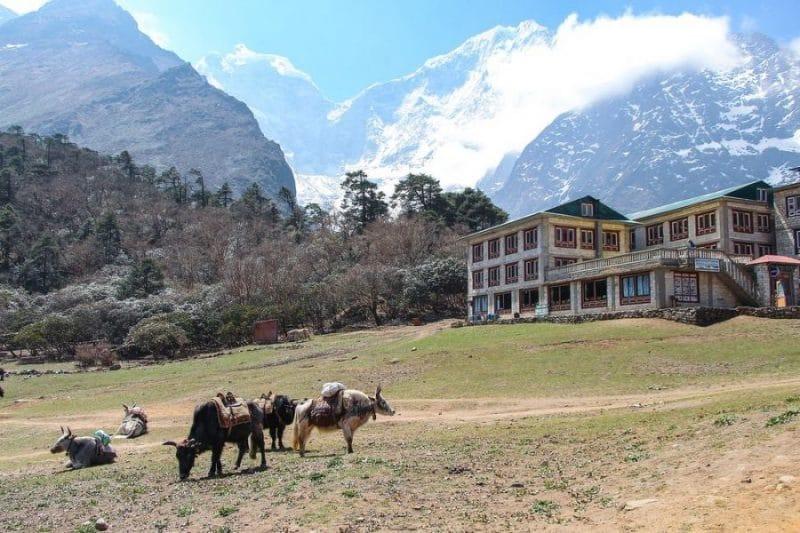 tengboche_monasterio