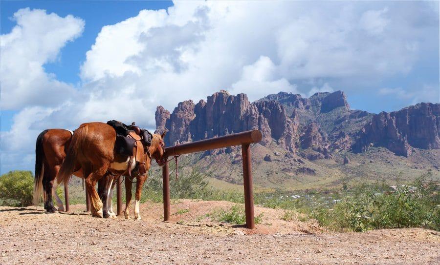 Caballos paisaje 900x543 - El Viejo Oeste, las tragaperras y la fiebre por el póquer